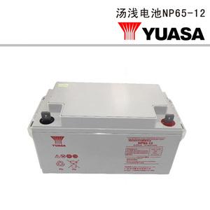 汤浅电池NP65-12